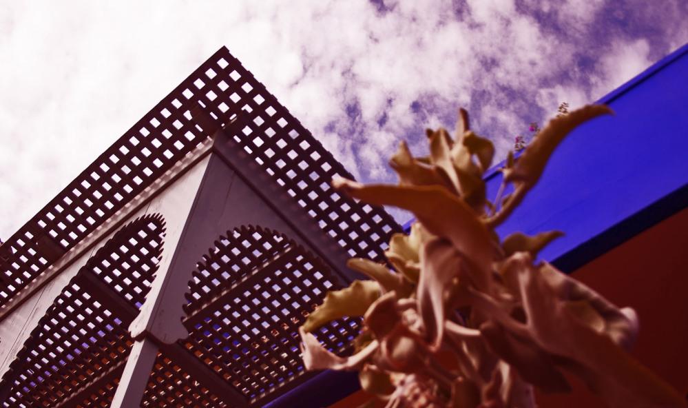 architecture villa majorelle 3